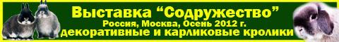 http://valleykrosava.narod.ru/01/010101-010812.jpg